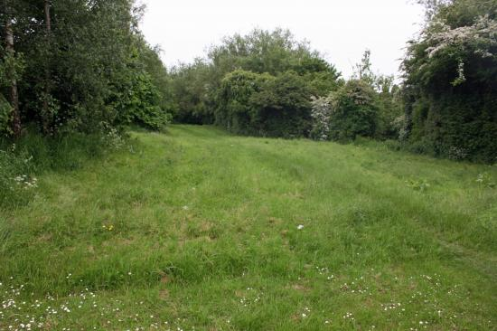Holly Hayes Road 3 Council Land