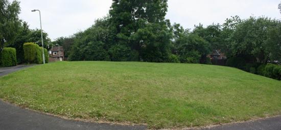 Thomas Road 1 Council Land